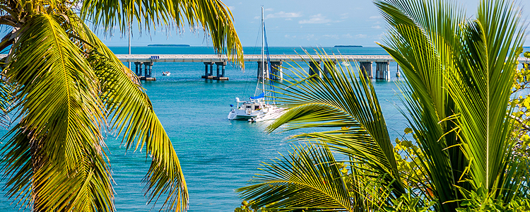1 02 excursiones miami No hidden fees - tour guide on board - daily departures - wi-fi - key west tours - miami to key west tour bus - call 305-423-9045 or click to save.